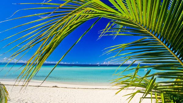 Madagascar - offerte vacanze
