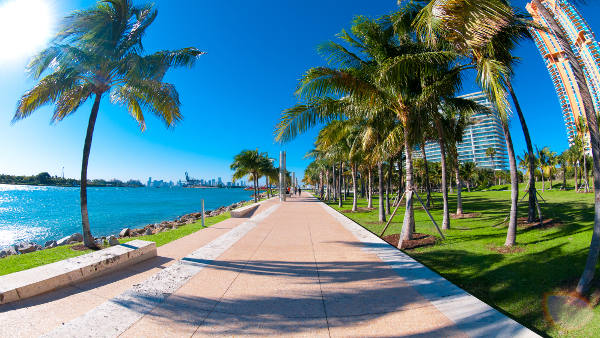Miami - Nos meilleures offres